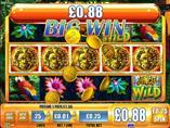 Jungle Wild Slot Machine